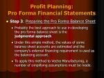 profit planning pro forma financial statements8