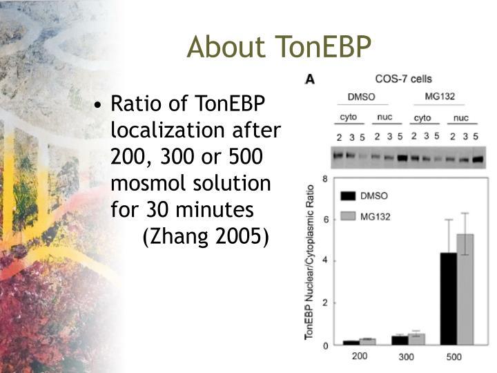 About TonEBP