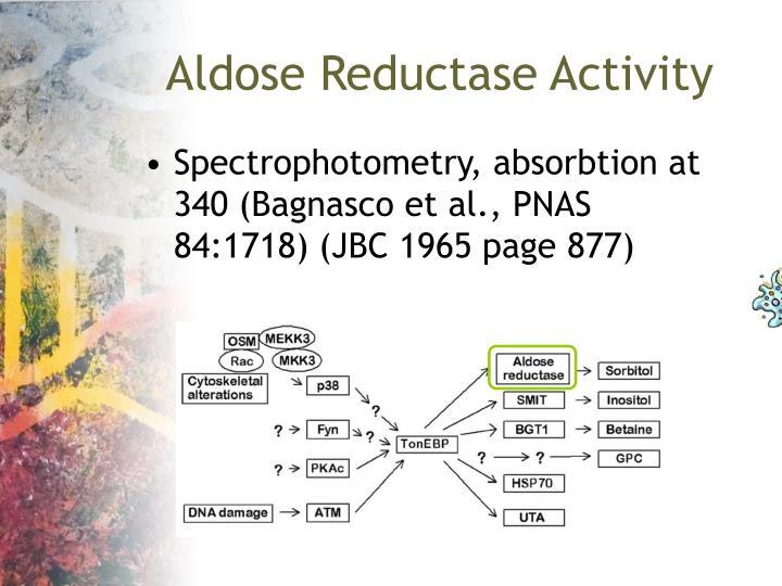 Aldose Reductase Activity