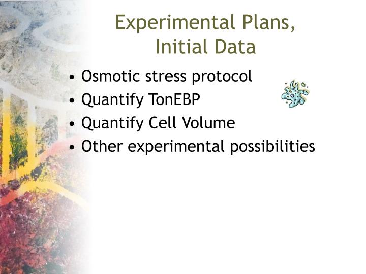 Experimental Plans,