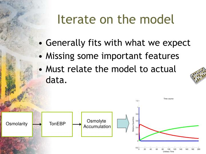 Iterate on the model
