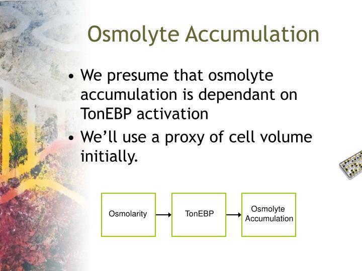 Osmolyte Accumulation