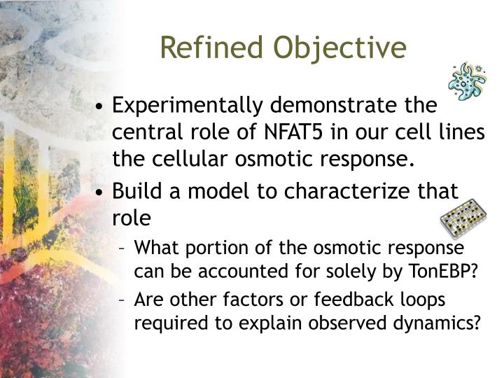 Refined Objective