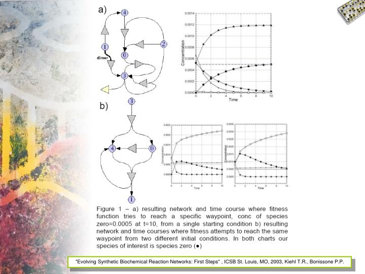 """""""Evolving Synthetic Biochemical Reaction Networks: First Steps"""" , ICSB St. Louis, MO, 2003, Kiehl T.R., Bonissone P.P."""