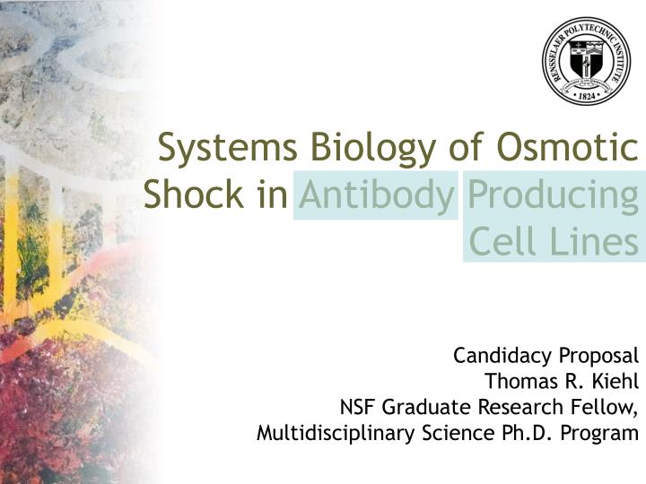 Systems Biology of Osmotic Shock in Antibody Producing Cell Lines