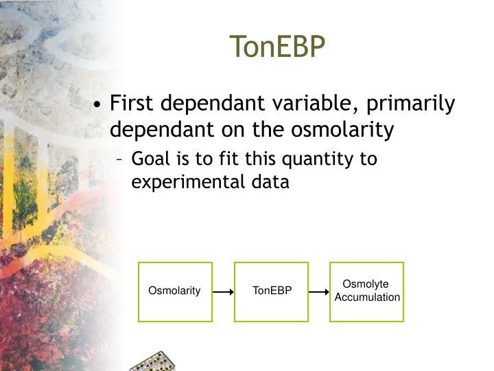TonEBP