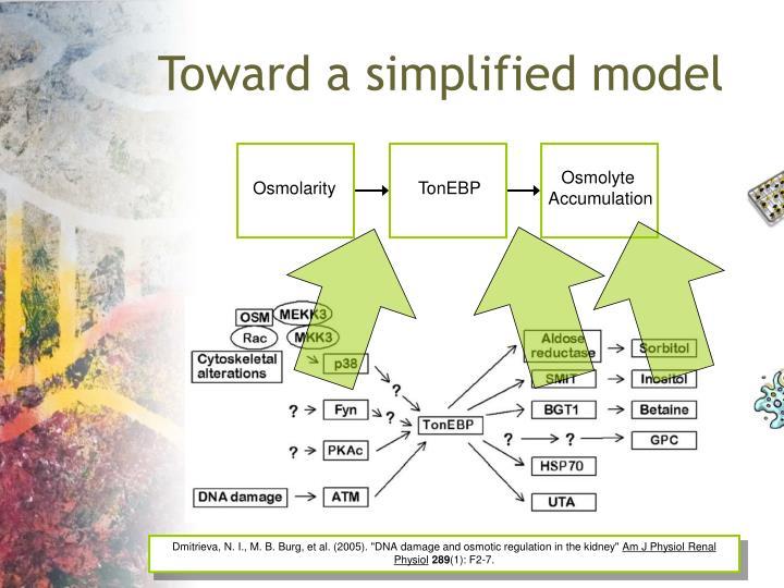 Toward a simplified model