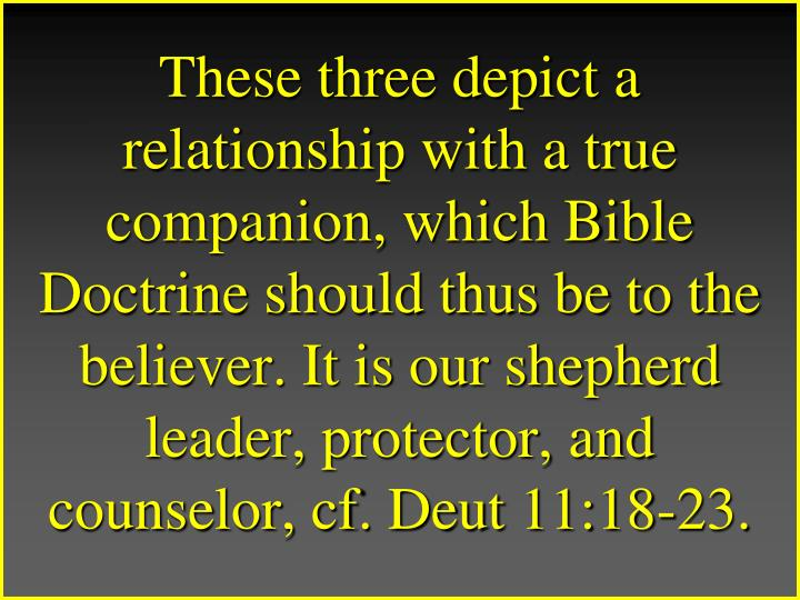 These three depict a relationship with a true companion, which Bible Doctrine should thus be to the believer. It is our shepherd leader, protector, and counselor, cf. Deut 11:18-23.