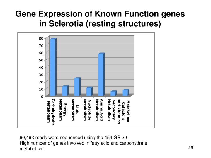 Gene Expression of Known Function genes in Sclerotia (resting structures)
