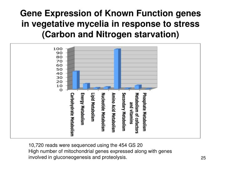 Gene Expression of Known Function genes in vegetative mycelia in response to stress (Carbon and Nitrogen starvation)