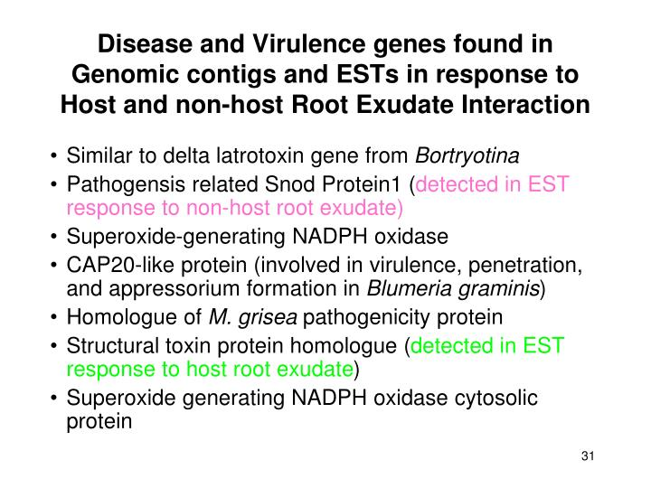 Disease and Virulence genes found in Genomic contigs and ESTs in response to Host and non-host Root Exudate Interaction