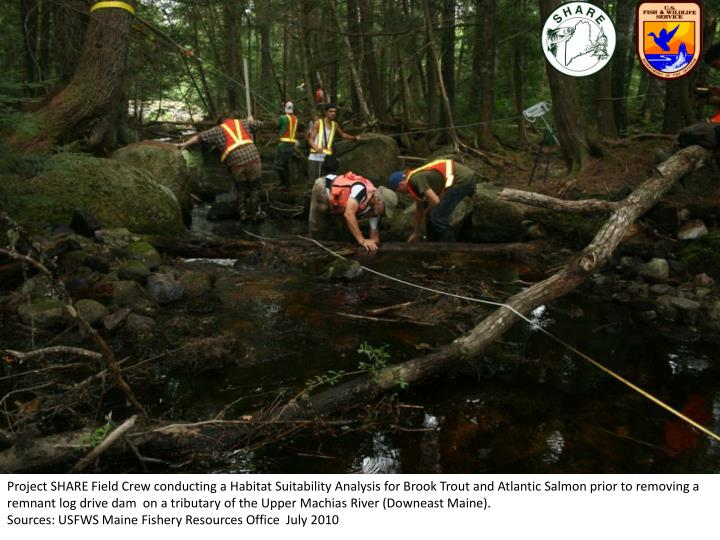 Project SHARE Field Crew conducting a Habitat Suitability Analysis for Brook Trout and Atlantic Salm...