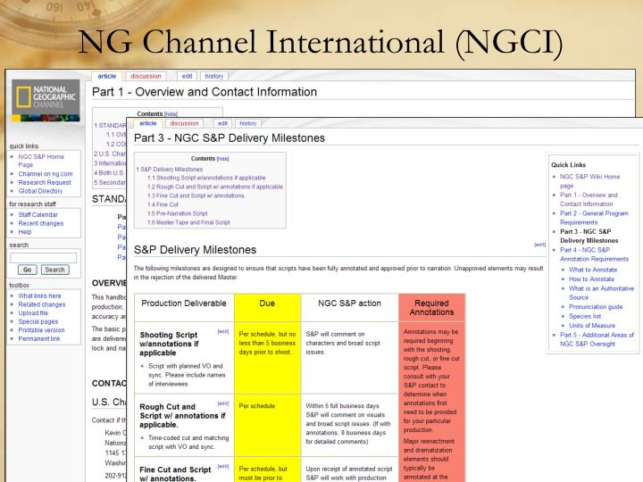 NG Channel International (NGCI)