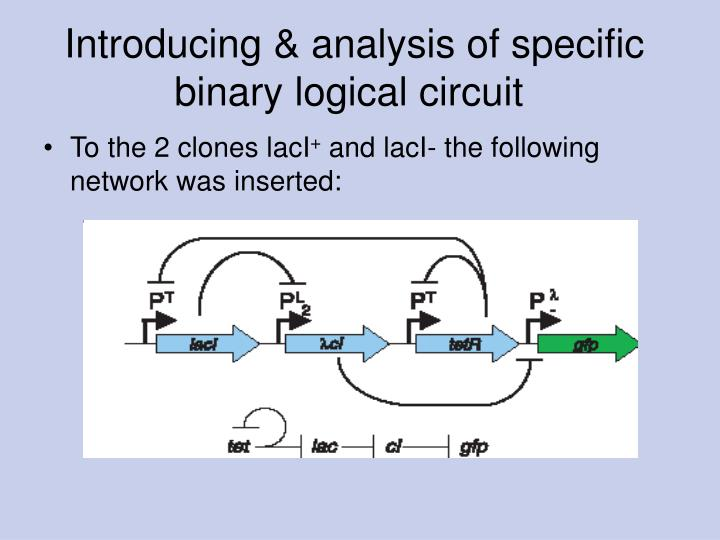 Introducing & analysis of specific binary logical circuit