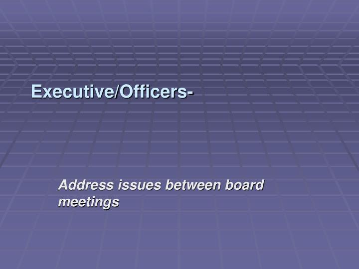 Executive/Officers-