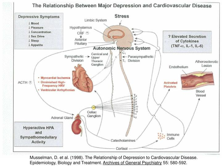 relationship of depression to diabetes type 1 and 2 epidemiology biology treatment