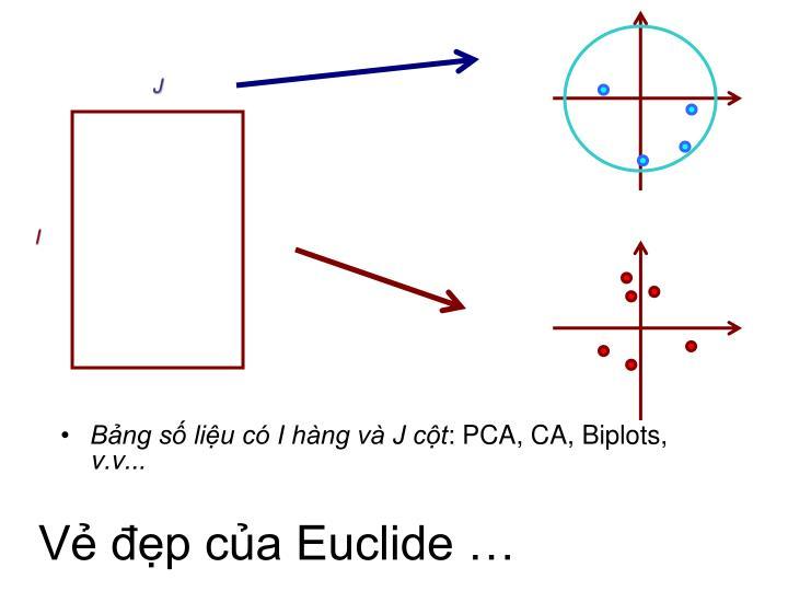 Vẻ đẹp của Euclide …