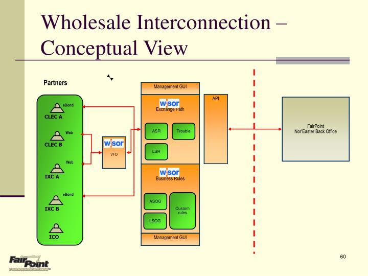Wholesale Interconnection – Conceptual View