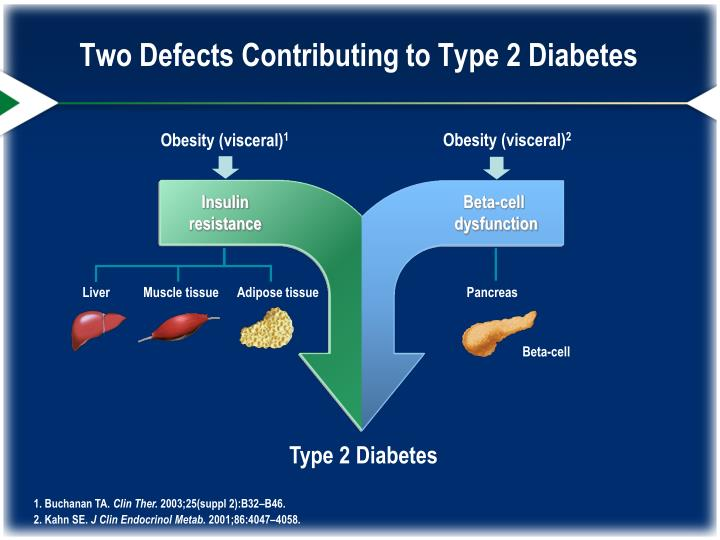 Two Defects Contributing to Type 2 Diabetes