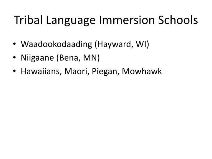 Tribal Language Immersion Schools