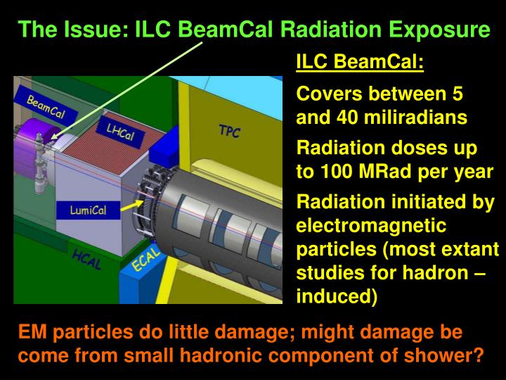 The Issue: ILC BeamCal Radiation Exposure
