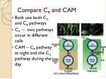 compare c 4 and cam