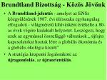 brundtland bizotts g k z s j v nk1