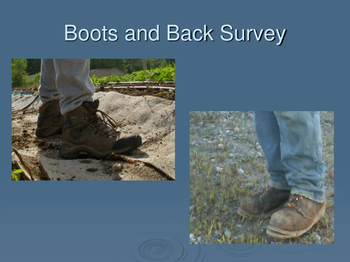Boots and Back Survey