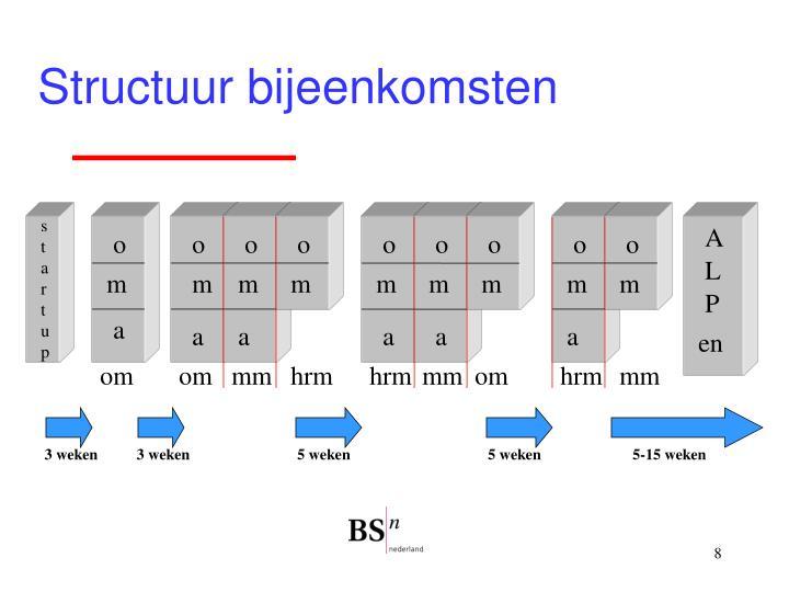 Structuur bijeenkomsten