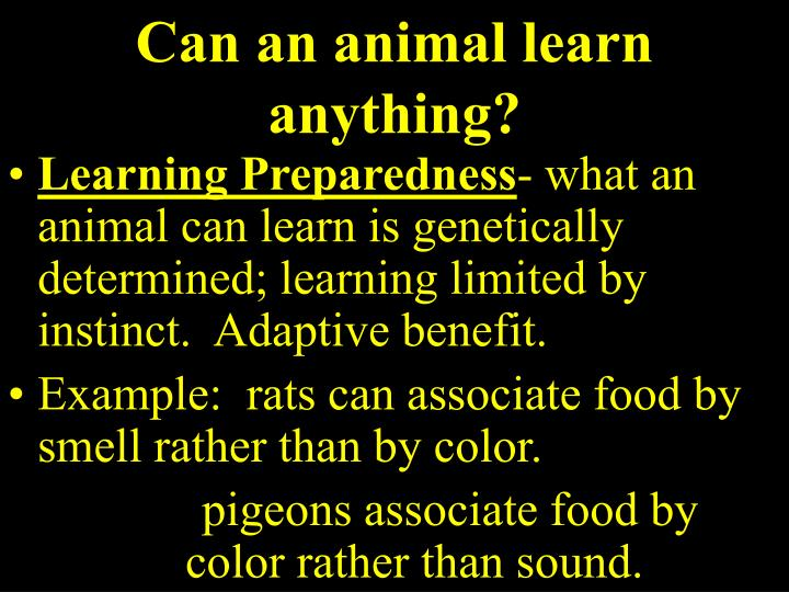 Can an animal learn anything?