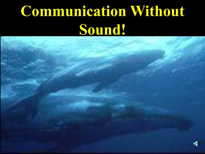 Communication Without Sound!