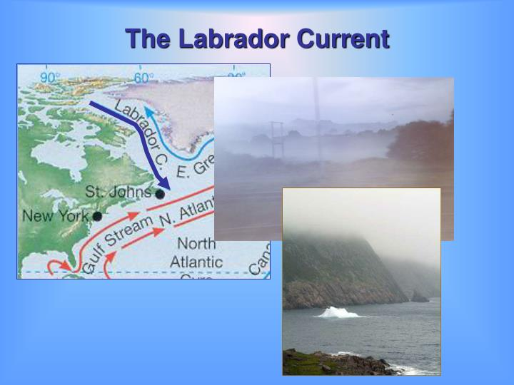 The Labrador Current