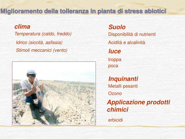 Miglioramento della tolleranza in pianta di stress abiotici