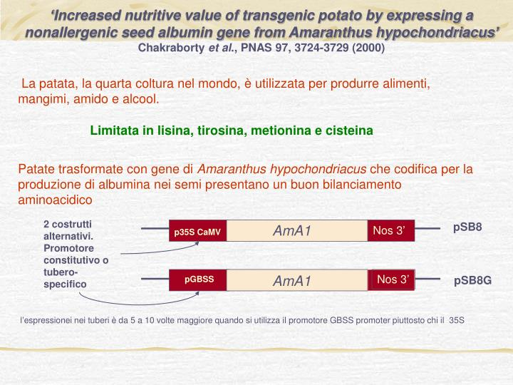 'Increased nutritive value of transgenic potato by expressing a nonallergenic seed albumin gene from Amaranthus hypochondriacus'