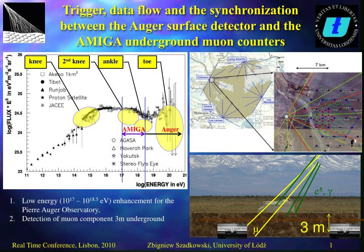 Trigger, data flow and the synchronization between the Auger surface detector and the AMIGA undergro...