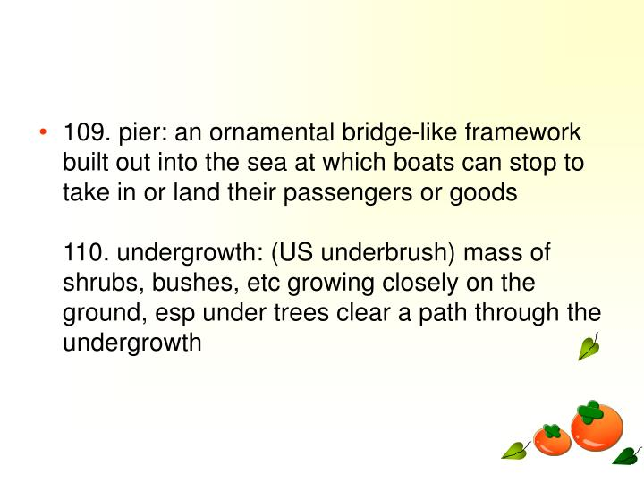 109. pier: an ornamental bridge-like framework built out into the sea at which boats can stop to take in or land their passengers or goods