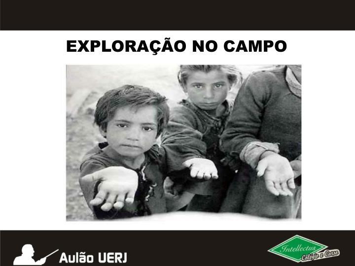 EXPLORAÇÃO NO CAMPO