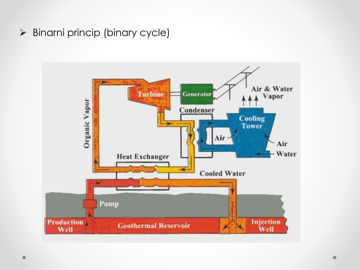 Binarni princip (binary cycle)
