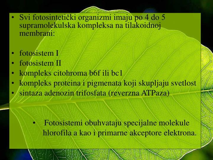 Svi fotosintetički organizmi imaju po 4 do 5 supramolekulska kompleksa na tilakoidnoj membrani: