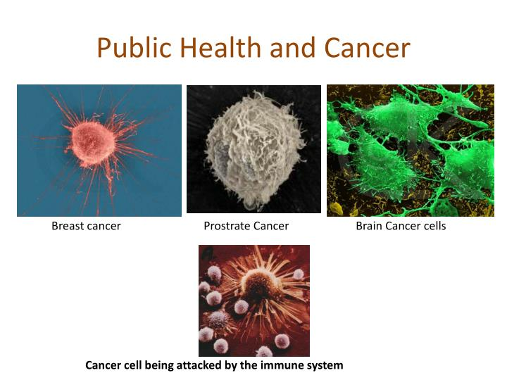 Public Health and Cancer