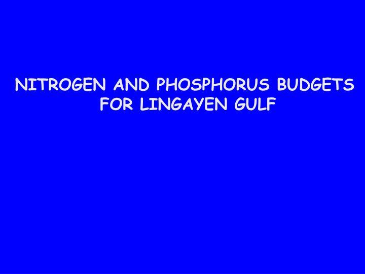 NITROGEN AND PHOSPHORUS BUDGETS