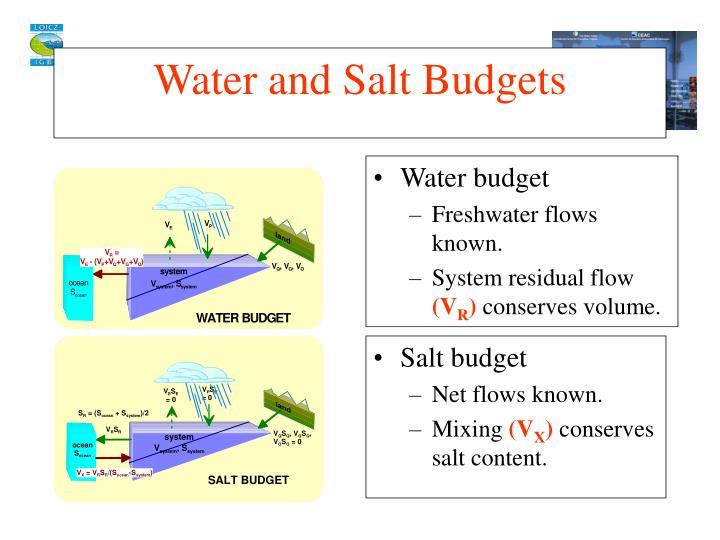 Salt budget