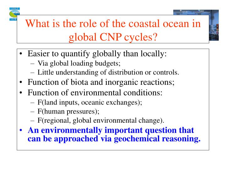 What is the role of the coastal ocean in global cnp cycles