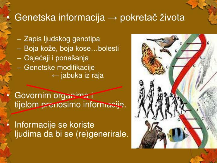 Genetska informacija