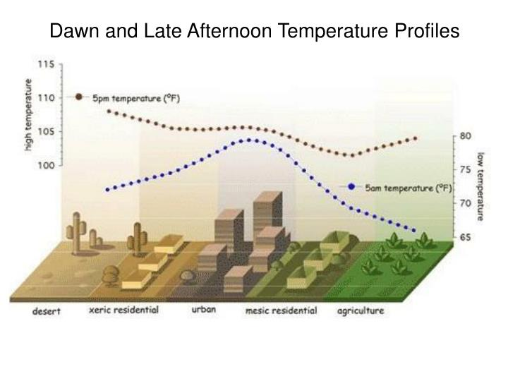 Dawn and Late Afternoon Temperature Profiles
