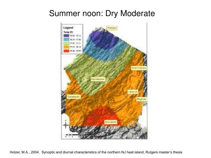 Summer noon: Dry Moderate