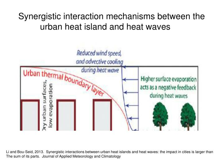 Synergistic interaction mechanisms between the