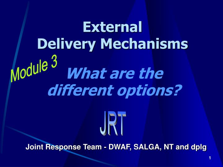 external delivery mechanisms n.