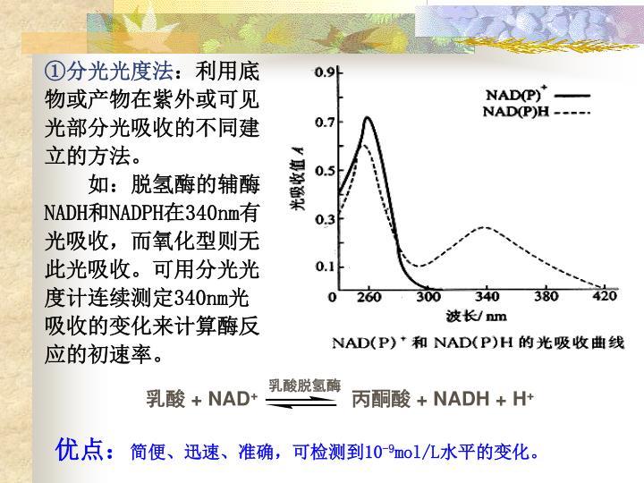 乳酸脱氢酶