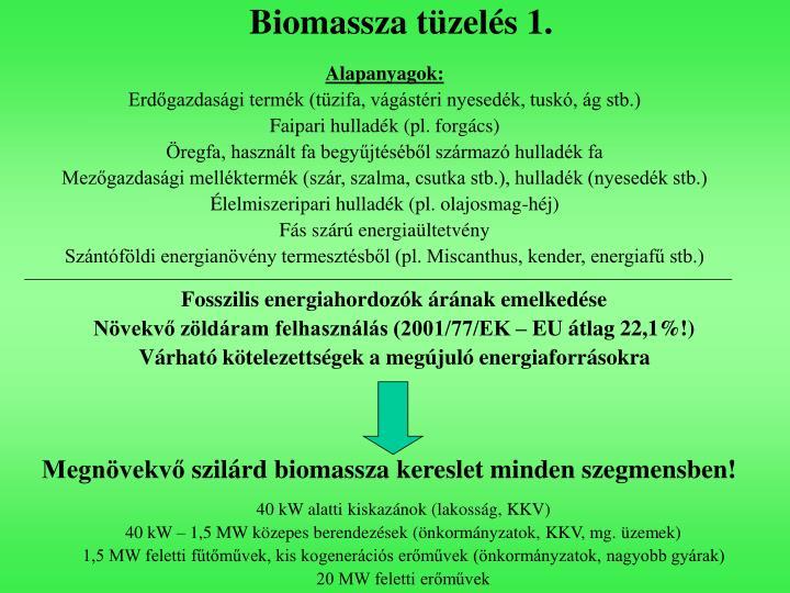 Biomassza tüzelés 1.